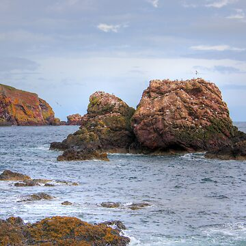 St. Abbs Rocks II by tomg