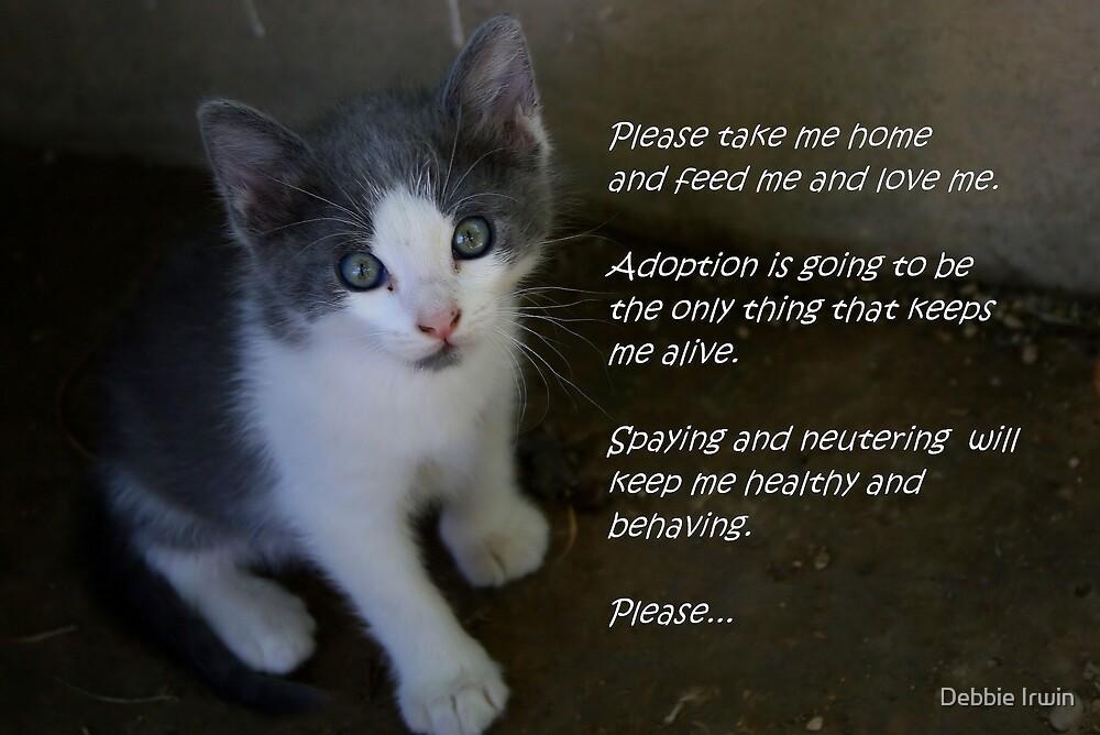 Pet Adoption by Debbie Irwin