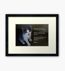 Pet Adoption Framed Print