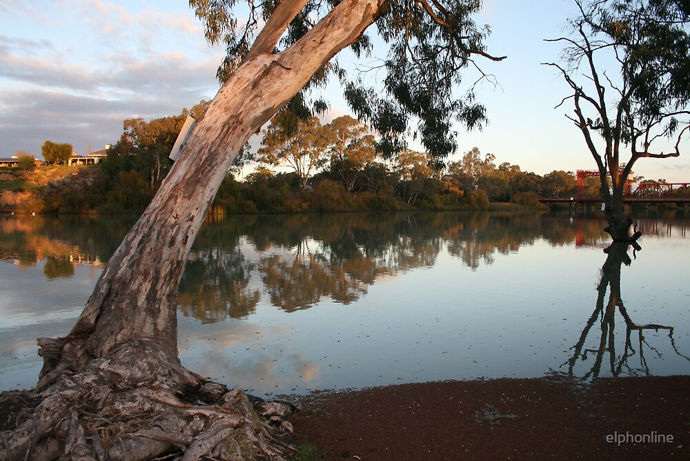 Renmark views by elphonline