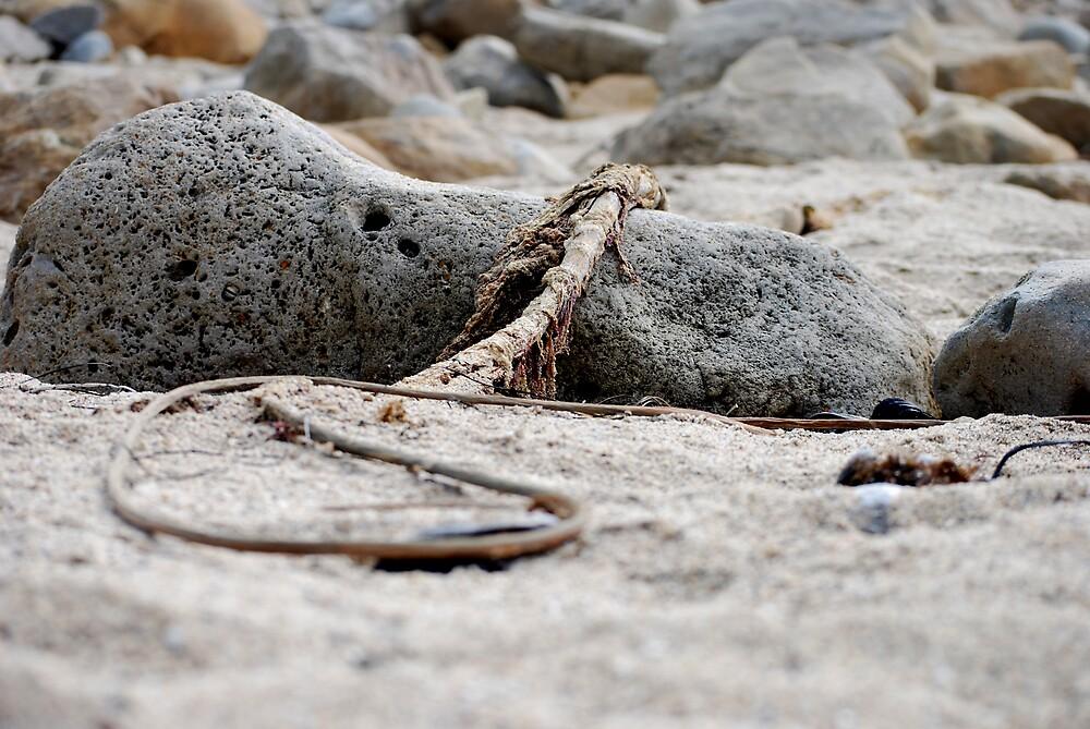 Sea Rope by MickaelaGood