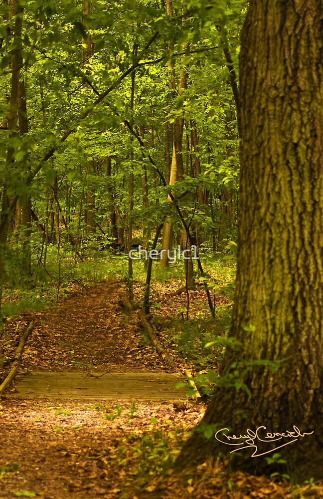 Nature's wonderous path by cherylc1