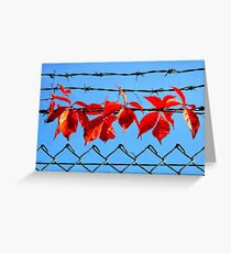 Vine wire Greeting Card