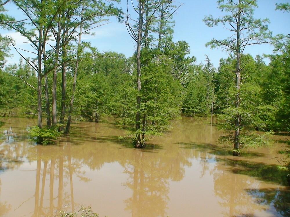 Kentucky Bayou by ranaman