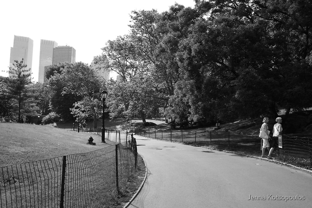 central path for central park by Jenna Kotsopoulos