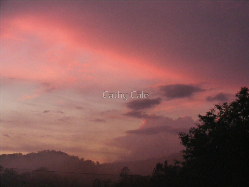 Sailor's Delight? by Cathy Cale