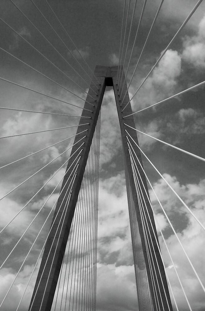 Charleston, SC Bridge by RandomPics