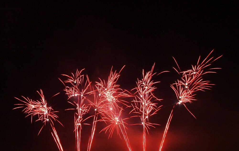 Fire Poppy's by Fabio Passaro