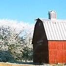 The Big Red Barn by Amber Finan