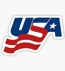 Team USA Hockey Sticker