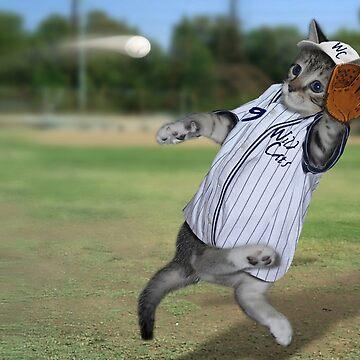 Baseball Catcher Kitten by Gravityx9