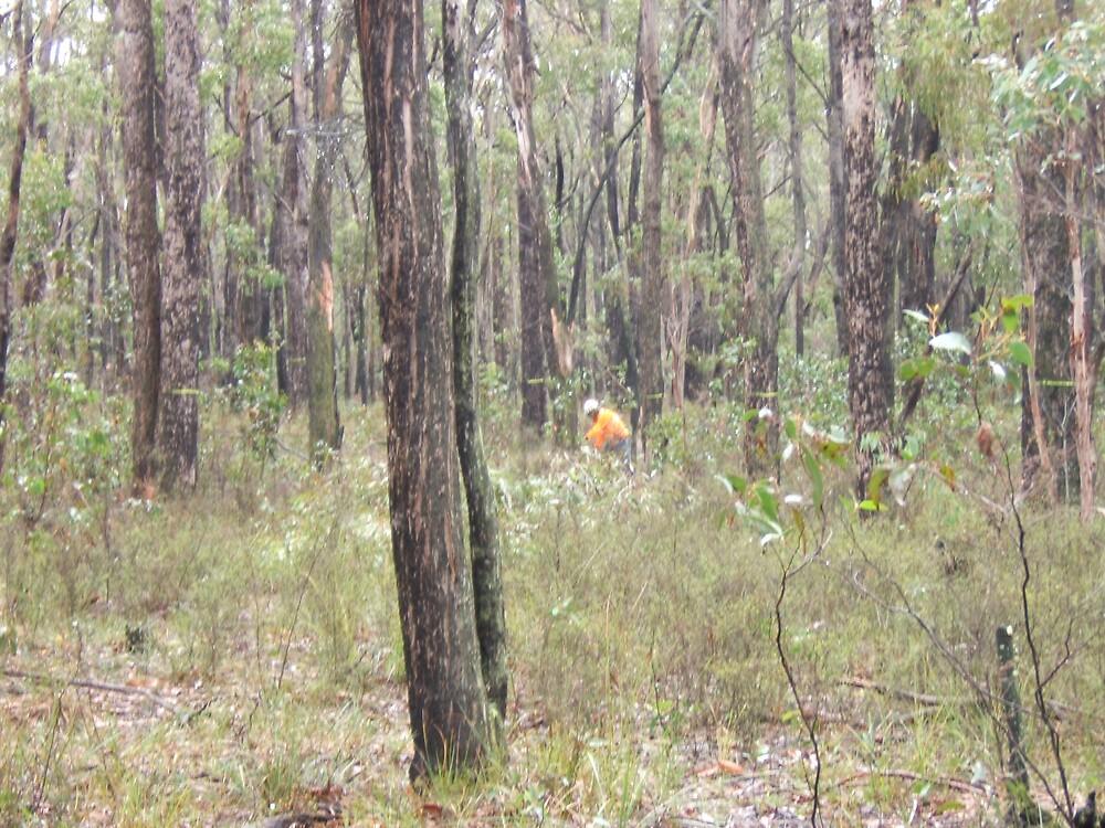 Lone workman in the bush by John Witte