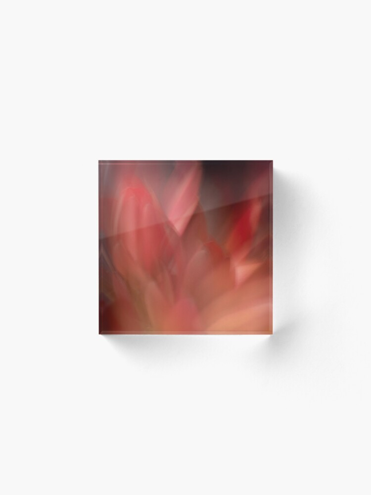 Alternate view of Fleur Blur-Abstract Red Leaves Photo Acrylic Block