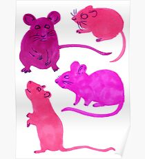 Rodents  Poster