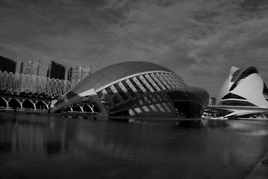 Cuidade de las Artes y las Ciencías, Valencia by Aran Durham