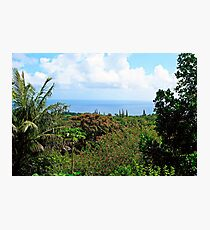 Road to Hana Study 07  Photographic Print