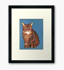 Sly Kitty Framed Print