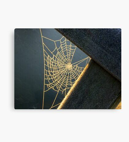 Sunkissed Web Canvas Print