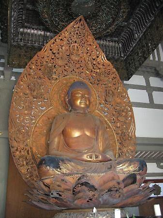 lotus Buddha, Hawaii, usa by chord0