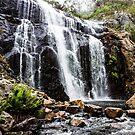 Mackenzie Falls, Grampians, Victoria by Elana Bailey