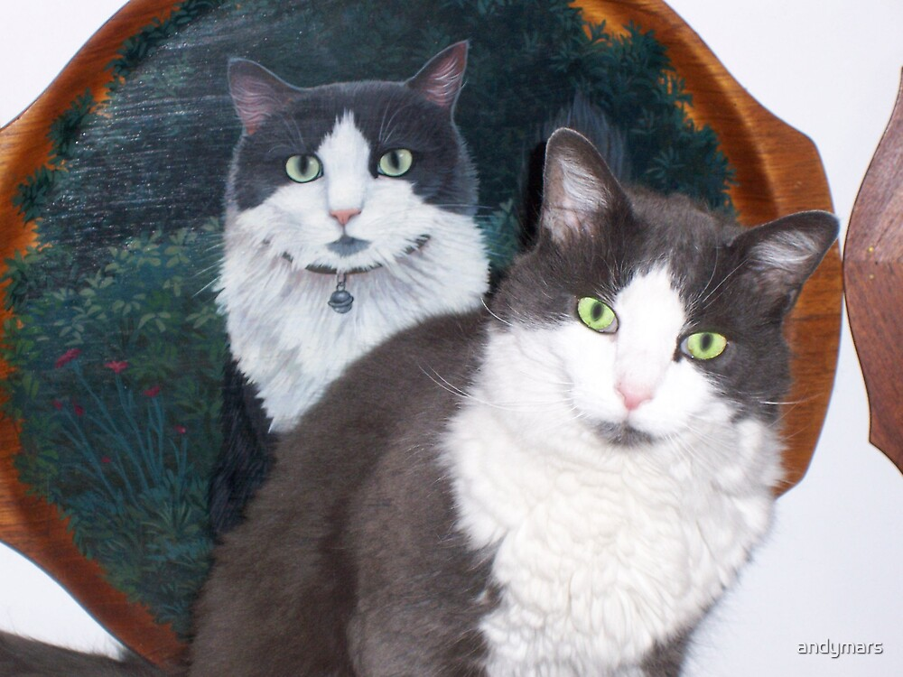 cat & handpainted portrait by andymars