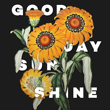 Good Day Sunshine by thejoyfulfox