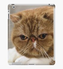 I Know I am The Best In Show! iPad Case/Skin