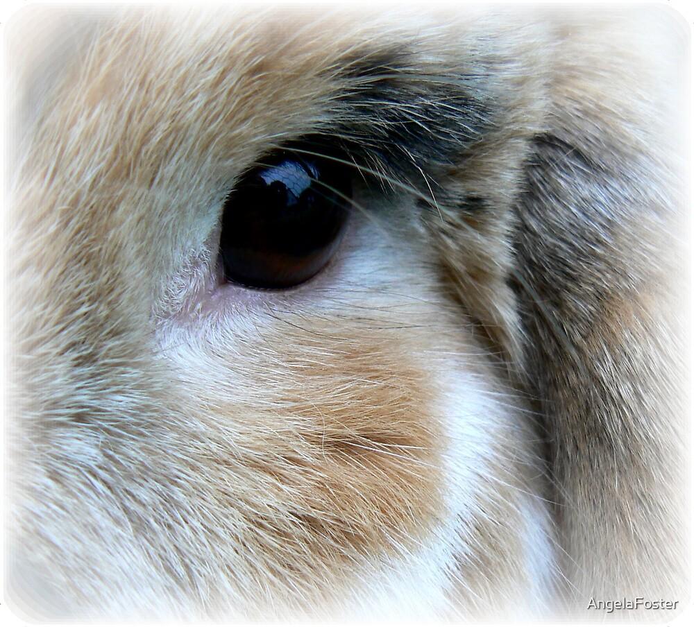nutmegs eye by AngelaFoster