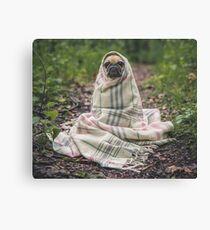 Peggie the Pug i Canvas Print
