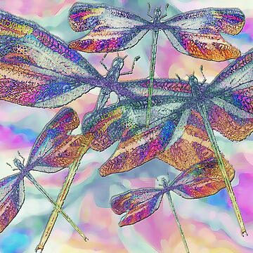 Dragonfly busy in the midst by trishie