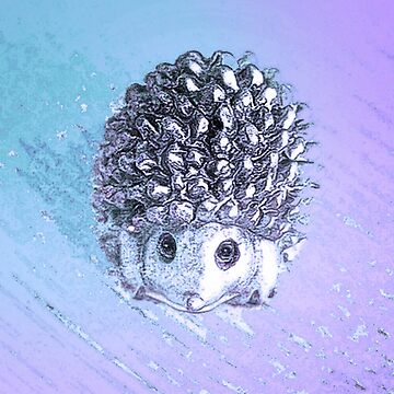 Plaintive baby hedgehog by trishie