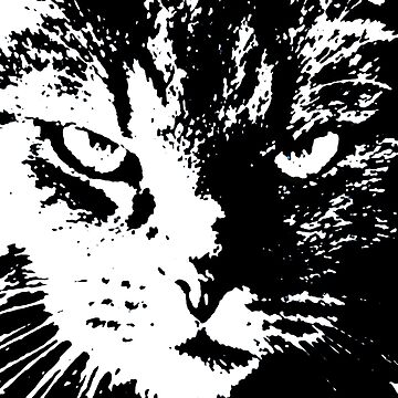 ANGRY CAT POP ART - BLACK & WHITE by NYWA-ART