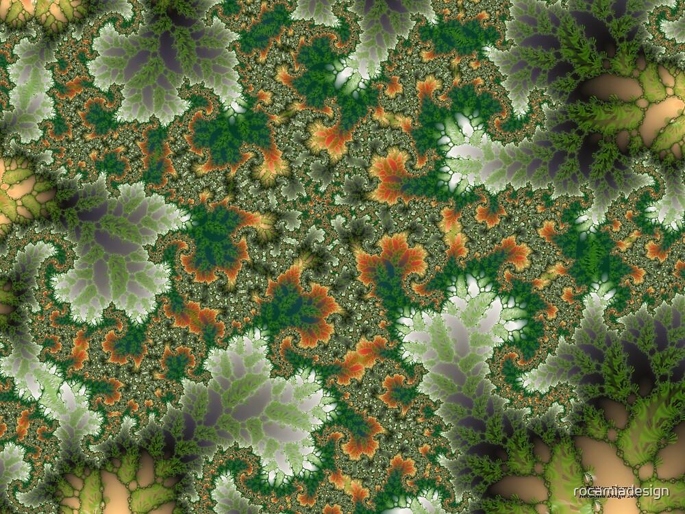 Lichens by rocamiadesign