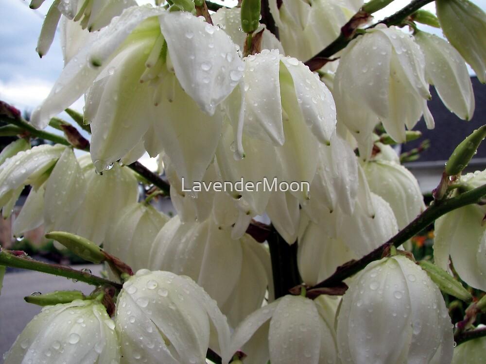 Rainy Day Weddin' Belles by LavenderMoon