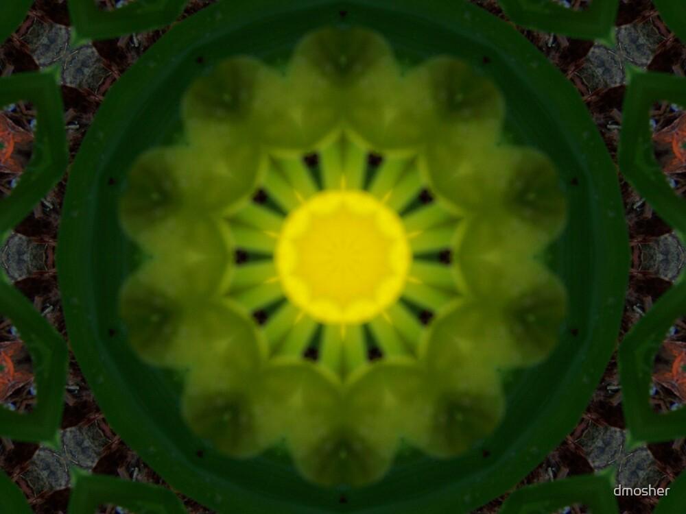 Lemon by dmosher