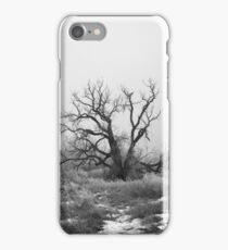 Sleepy Hollow iPhone Case/Skin