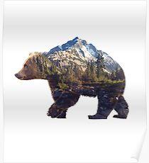 Bear world Poster
