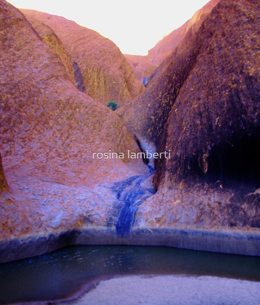 Uluru waterhole by Rosina  Lamberti