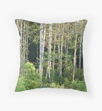 Sycamore Trees  Throw Pillow