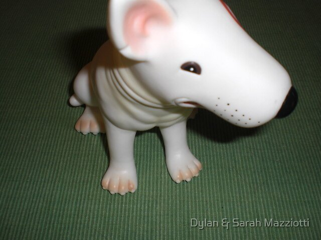 DOG by Dylan & Sarah Mazziotti