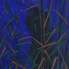 """The Night"", woman silhouette in the grass, ultramarine starry sky by clipsocallipso"