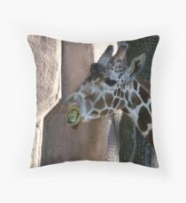 More than a mouth full Throw Pillow