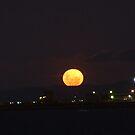 Moonrise, Townsville by Chris Cohen