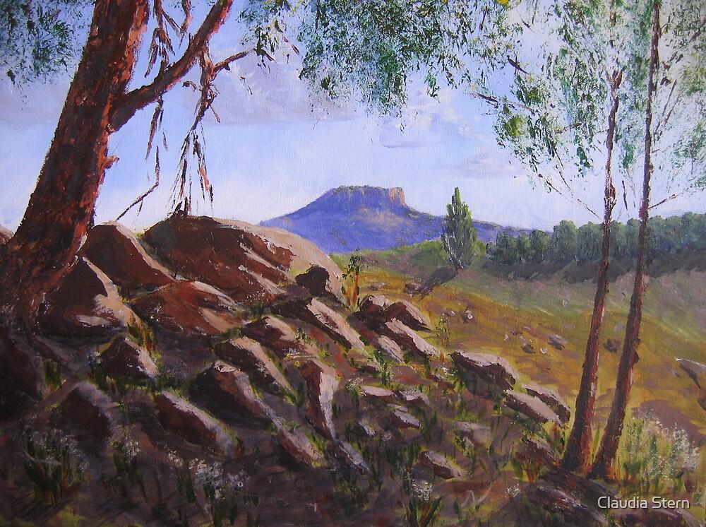 Over the stony ridge by Claudia Stern