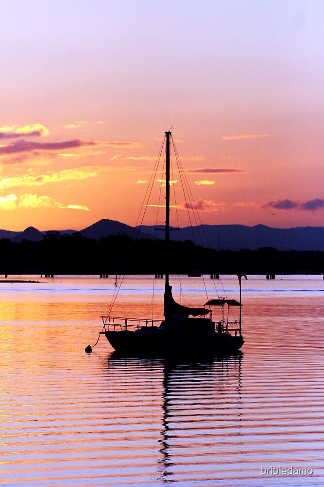 Bongaree Sunset  by bribiedamo