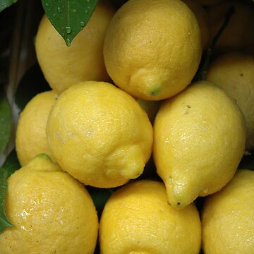 Florence Lemons by ausco