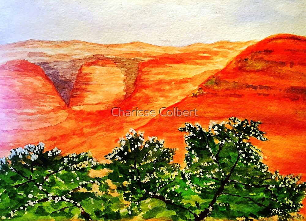 Canyon by Charisse Colbert