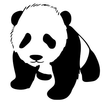 Panda Bear by ravendean