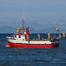 2099 Íslandsbersi HU-113 by Photos by Ragnarsson