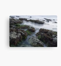 Erie Water Canvas Print